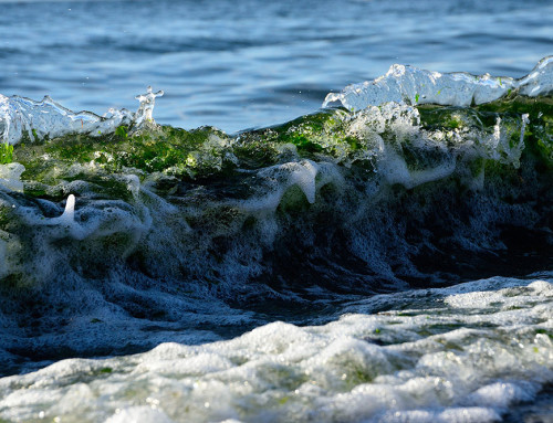 Mukilteo Waves